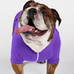 Large Purple Fleece Doggie Hoodie